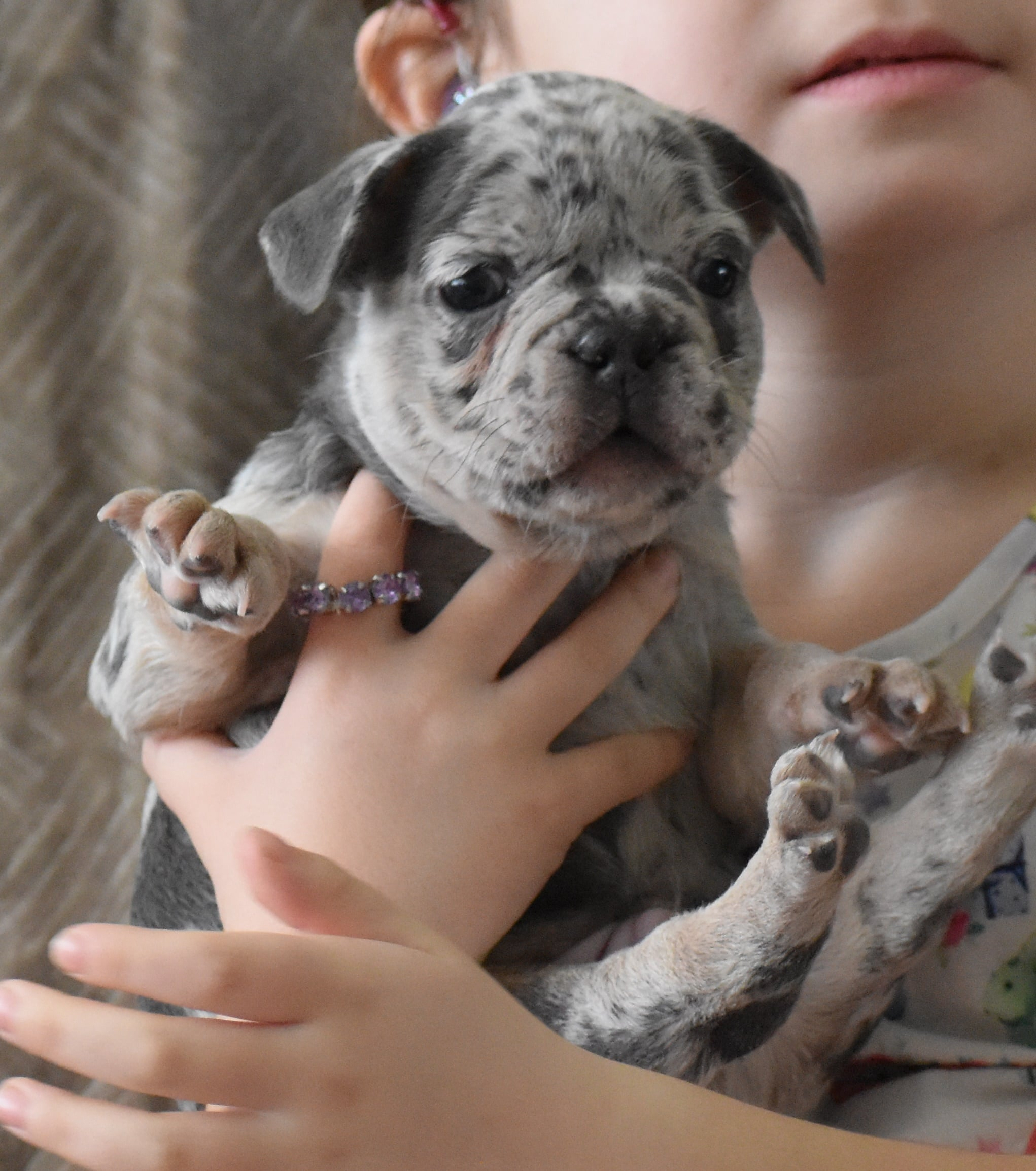 Kid Holding Puppy with Beaded collar