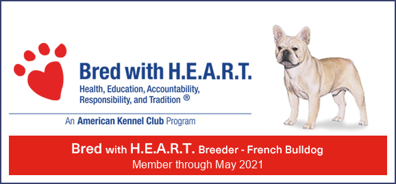 akc bred with heart logo